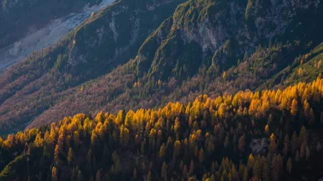 nature themed background of mountains and color changing trees - mgost stock videos and b-roll footage