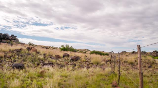 nature timelapse - karoo bildbanksvideor och videomaterial från bakom kulisserna