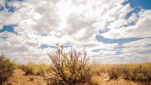 nature timelapse - karoo video stock e b–roll