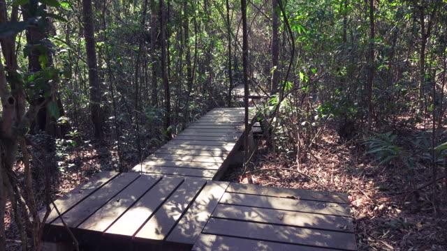 4K-VDO TU:Nature Trail