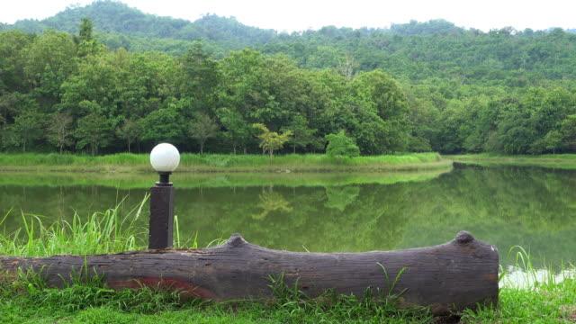vídeos de stock, filmes e b-roll de natureza árvore na colina e reflexão panorâmica tiro - reflection