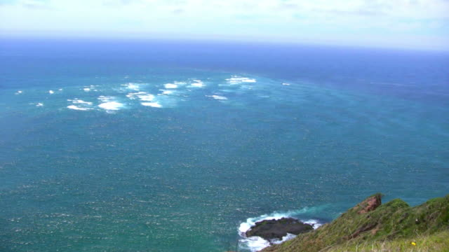 vidéos et rushes de (hd1080i) crise de la nature: two oceans satisfaire; white vagues - région du northland