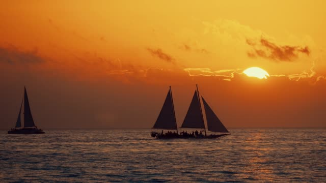 nautical vessel sailing against golden sunset - the florida keys stock videos & royalty-free footage