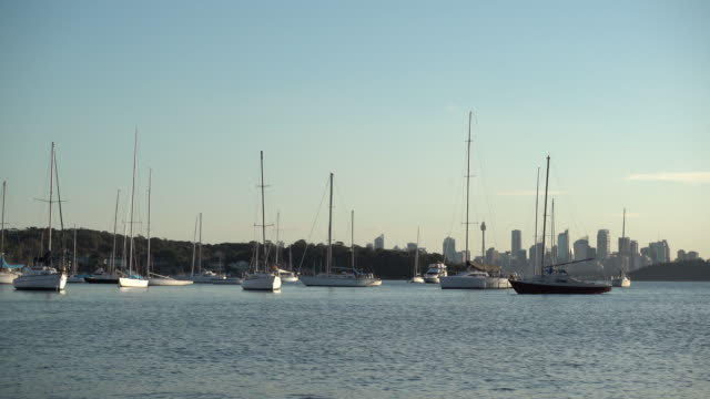 ワトソン湾、オーストラリアの航海船ヨット - nautical vessel点の映像素材/bロール