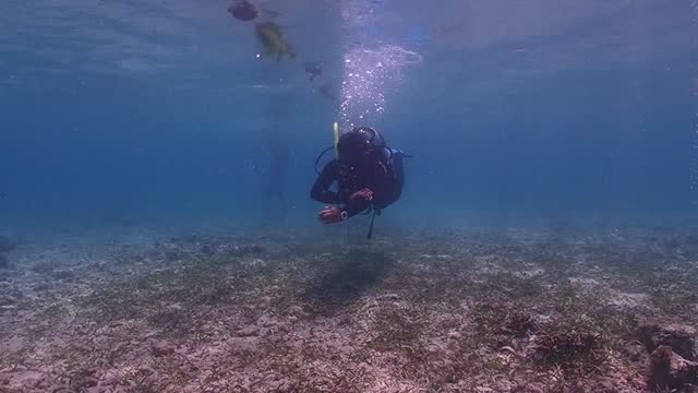padi navigation - aqualung diving equipment stock videos & royalty-free footage