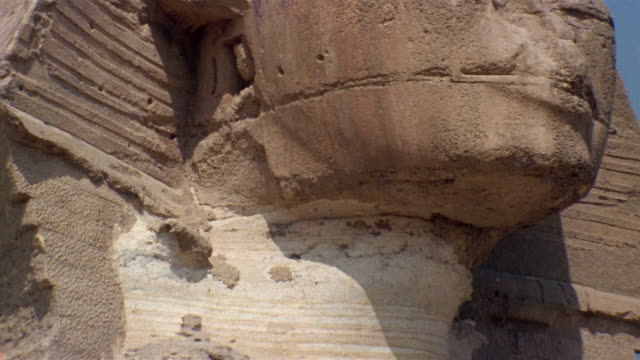 ms neck of the sphinx/ tu zi cu eye and ear of the sphinx/ giza, egypt - stone material stock videos & royalty-free footage