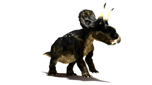 nedoceratops dinosaur running - herbivorous stock videos & royalty-free footage