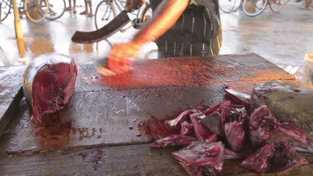 vídeos de stock e filmes b-roll de negombo fish market (lellama fish market), a man gutting fish, negombo, west coast of sri lanka, asia  - amanhar o peixe