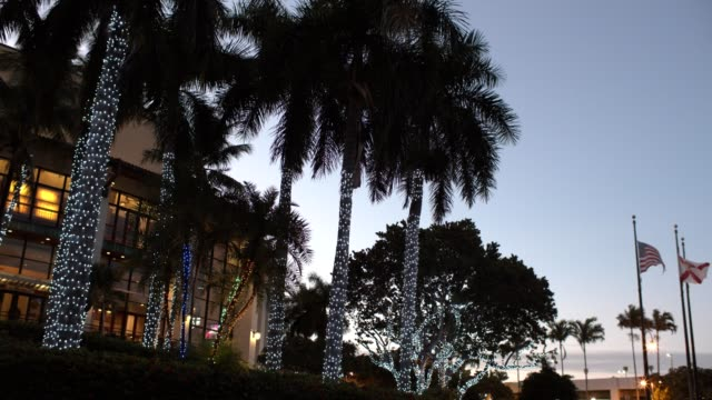 Neon Palm bomen