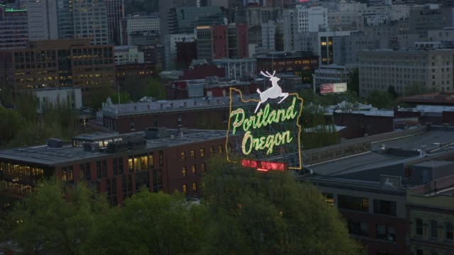 neon sign in portland, oregon - portland oregon stock videos & royalty-free footage