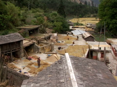 ms, ha, pan, nepal, ghasa, farmers working with grain on roof tops - small group of animals stock videos & royalty-free footage