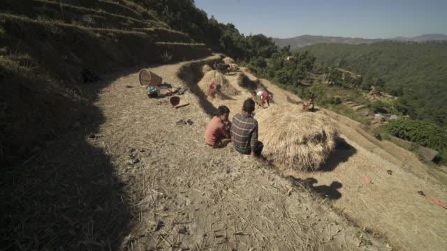 Nepalees familie bereidt hooibalen op berghelling