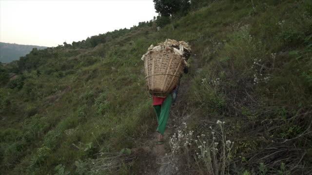 Nepalees man en vrouw voeren grote manden van maïs bergop
