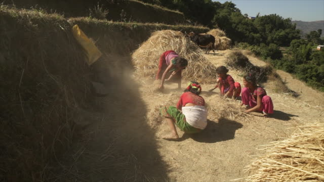 nepali women and girls uses hands to pile hay - poverty stock videos & royalty-free footage