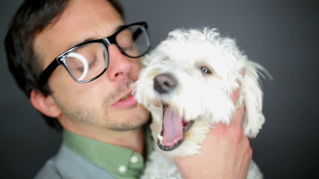 nerd and a dog,close up - eccentric stock videos & royalty-free footage