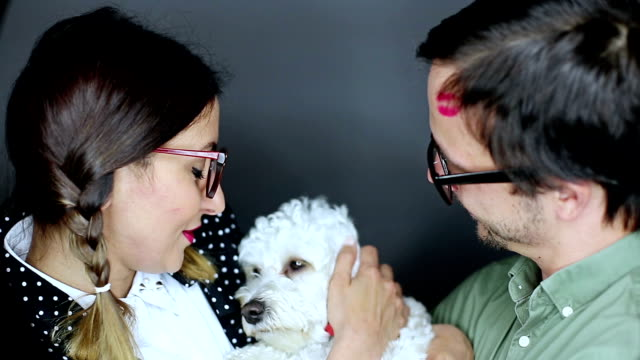 nerd couple and fluffy white dog - lipstick kiss stock videos and b-roll footage