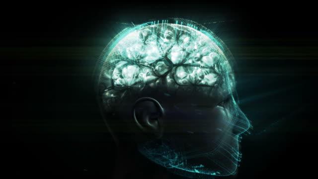 nerve system concept