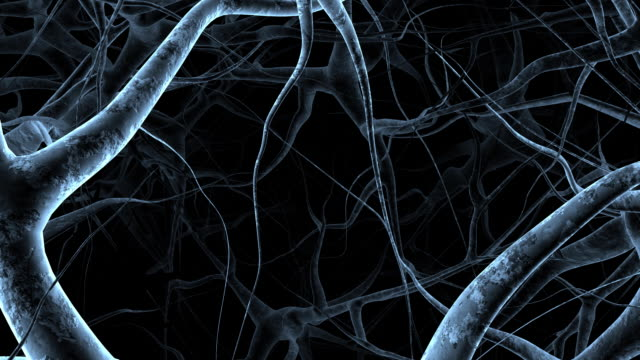 nerves - biomedical illustration stock videos & royalty-free footage