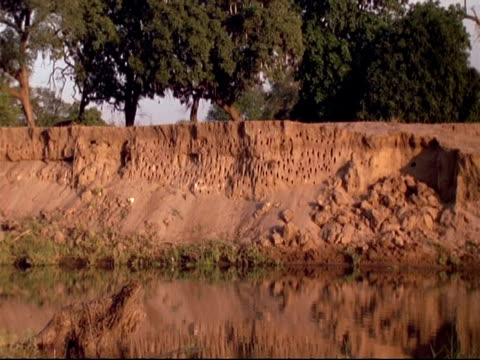 wa nest-holes of southern carmine bee-eaters in red sandstone, water in foreground, mana pools, zimbabwe - sandstone stock videos & royalty-free footage