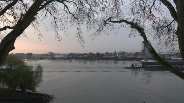 netherlands barges pass on river lek at dawn - lek stock videos & royalty-free footage