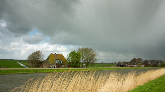 netherlands, de rijp, abandoned farm near canal. cyclist - olanda settentrionale video stock e b–roll