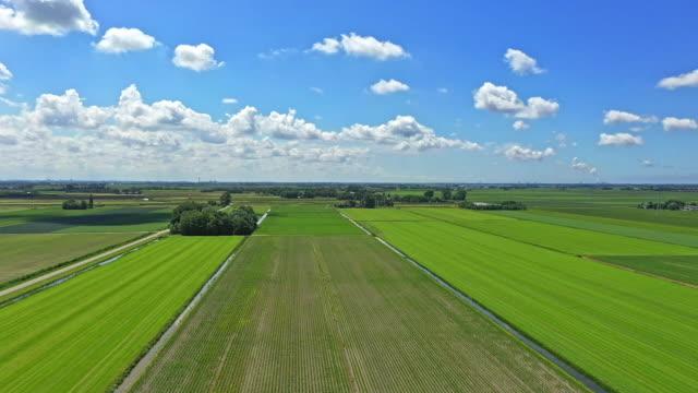 netherlands, dutch sky, green meadows - netherlands stock videos & royalty-free footage
