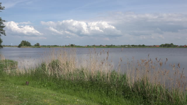 netherlands earnewald lake and reeds - rural scene stock videos & royalty-free footage