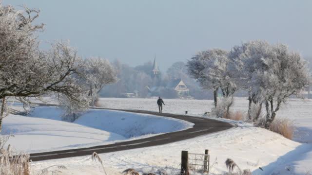 Netherlands, Idsegahuizum, Man walks with dog. Winter, frost