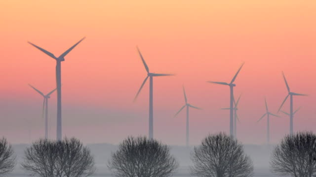 Netherlands, Lelystad. Wind Turbines in polder at sunrise