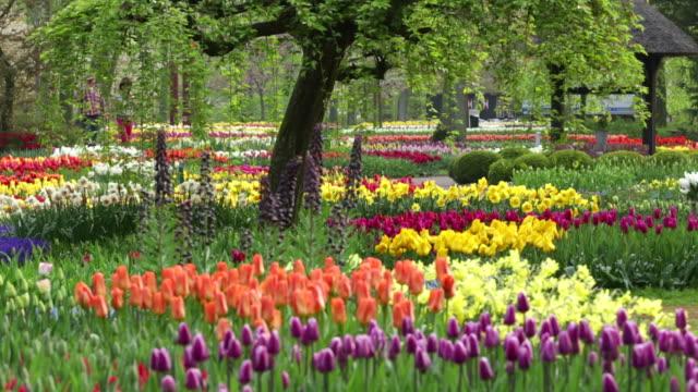 Netherlands, Lisse, Keukenhof gardens, Couple enjoying the flowers