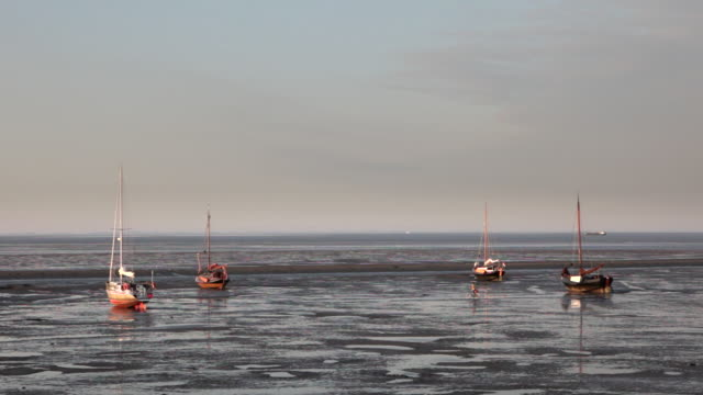 netherlands, nes on ameland, island belonging to wadden sea islands. woman with bicycle walks on mud flat. boats on mud flat at low tide - mud flat stock videos and b-roll footage