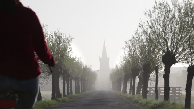 netherlands, niedorp, woman cycles on tree lane in morning mist - morning stock videos & royalty-free footage