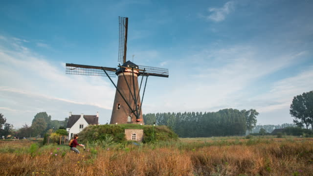 netherlands, nuenen, village of vincent van gogh. windmill de roosdonck, which appears on 7 drawings of van gogh. - impressionism stock videos & royalty-free footage