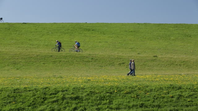 netherlands, petten, cyclists and hikers on sea dike called hondsbossche zeewering - olanda settentrionale video stock e b–roll