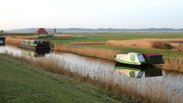 netherlands, petten, polder called pettemer polder. houseboat, boat, farm, windmill. woman cycles - olanda settentrionale video stock e b–roll