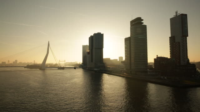 netherlands, rotterdam, skyline with high rise buildings and erasmus bridge. sunrise - rotterdam stock videos & royalty-free footage
