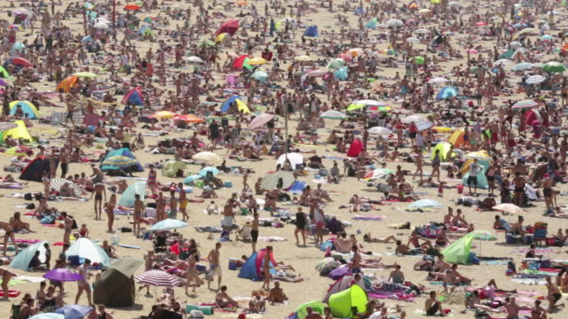 vídeos y material grabado en eventos de stock de netherlands, scheveningen, near the hague, summertime on the beach, people sunbathing and enjoying the sea water - tomar el sol