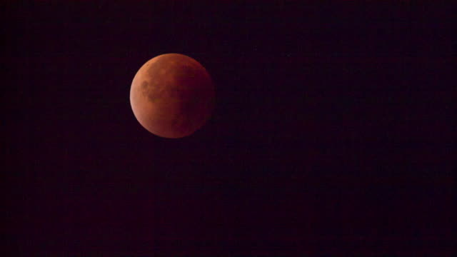 netherlands, 's-graveland, red supermoon - supermoon stock videos & royalty-free footage