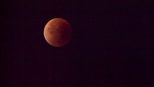 stockvideo's en b-roll-footage met netherlands, 's-graveland, red supermoon - maan