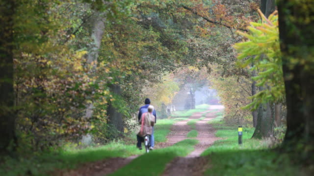 stockvideo's en b-roll-footage met netherlands, winterswijk. country road in autumn colors. man and woman on bicycle - nederland