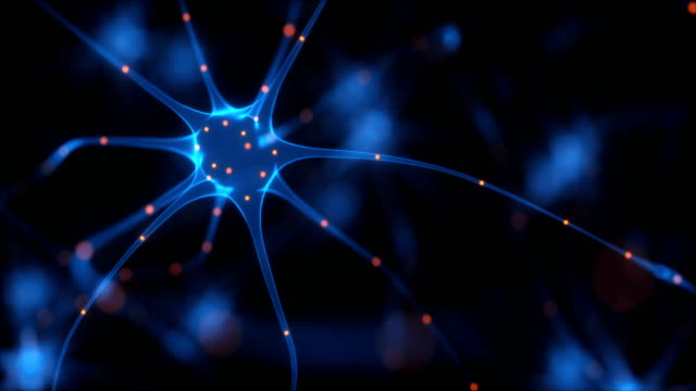 neuron and synapse, animation - human nervous system stock videos & royalty-free footage