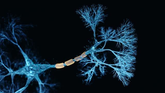 neuron hologram - dendrite stock videos & royalty-free footage
