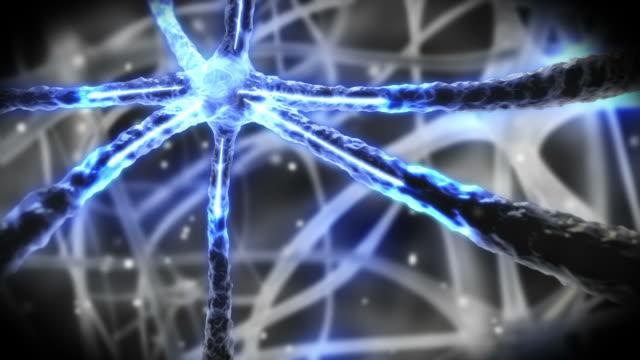 vídeos y material grabado en eventos de stock de neuron pulsing through nervous system - neuronas