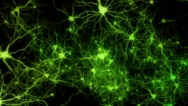 neuronal activity - shooting a weapon stock videos & royalty-free footage