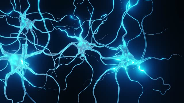 neurons cells system - dendrite stock videos & royalty-free footage