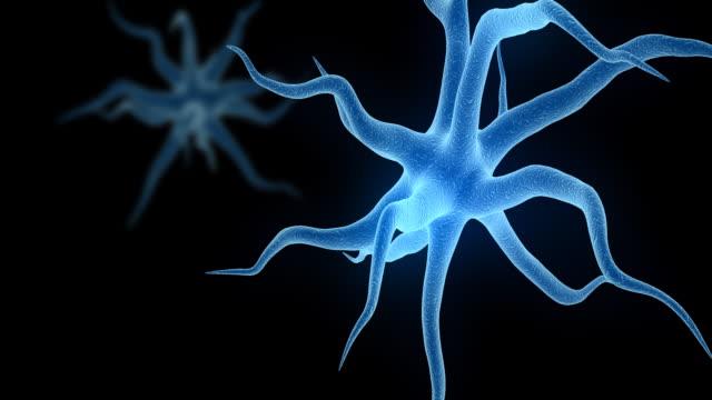 neuronen hd - human cell stock-videos und b-roll-filmmaterial