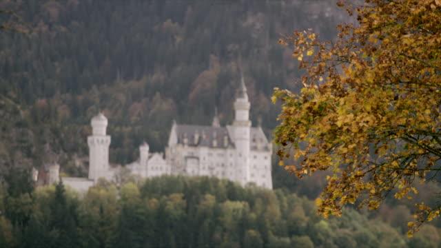 Neuschwanstein Castle in forest