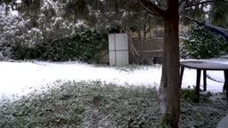 Nevado Garden