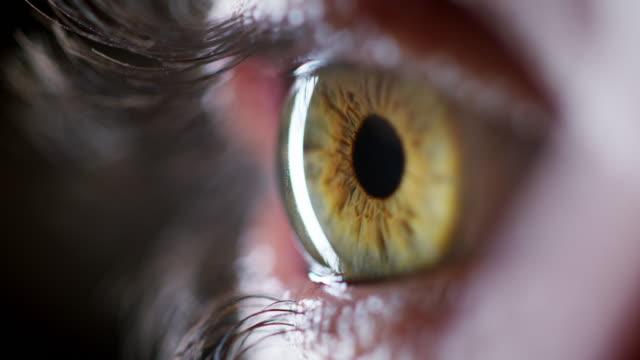 stockvideo's en b-roll-footage met raak nooit de focus op je visie in het leven - netvlies
