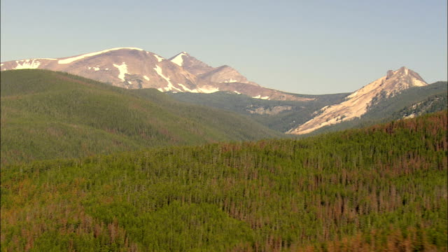new and old trees in beaverhead deerlodge national forest  - aerial view - montana,  deer lodge county,  helicopter filming,  aerial video,  cineflex,  establishing shot,  united states - national forest stock videos and b-roll footage